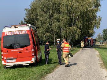 Die Feuerwehr Höchst konnte den Brand schnell unter Kontrolle bringen.Foto: VOL.AT