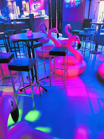 """<p class=""""caption"""">Im Schlachthaus sorgten während des Discopowerboxxx-Konzerts sogenannte """"Platzhalte-Flamingos"""" für Ordnung.</p>"""
