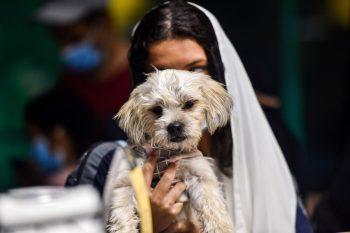 """Khobar. Hunde-Café: Im ultrakonservativen Königreich Saudi Arabien wurde mit dem """"Barking Lot"""" erstmals ein Café eröffnet, das Hunde zulässt. Die Vierbeiner gelten im Islam als unrein, Katzen hingegen nicht."""