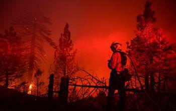 <p>Los Angeles. Bobcat Fire: Ein enormer Buschbrand frisst sich durch die Landschaft im Nordosten von Los Angeles in Kalifornien. Das sogenannte Bobcat Fire lodert seit mehr als zwei Wochen. Feuerwehrleute haben es erst zu 15 Prozent unter Kontrolle.</p>