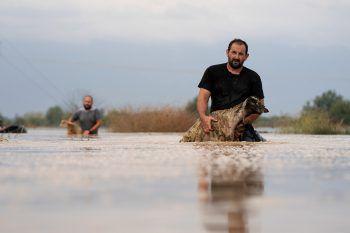<p>Megala Kalyvia. Rettungsaktion: Ein Hirte rettet seine Tiere aus einem gefluteten Dorf in Griechenland.</p>