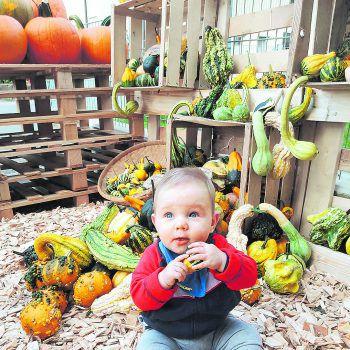 """<p class=""""caption"""">Theo (7 Monate) liebt es, zu dekorieren.</p>"""