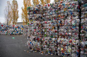 Was das Sammeln von PET-Flaschen angeht, macht Vorarlberg so schnell keiner etwas vor. Symbolfoto: Oliver Lerch