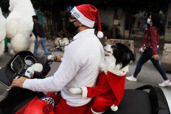 <p>Beirut. Witzig: Dieser als Santa gekleidete Hund dreht zusammen mit seinem Herrchen eine Runde mit dem Roller durch die libanesische Hauptstadt.</p>