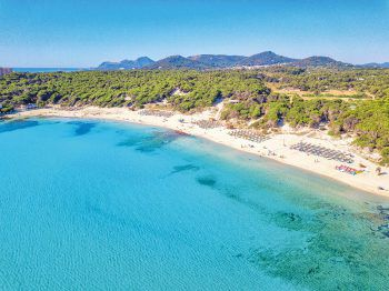 """<p class=""""title"""">               Mallorca              </p><p>Die bekannteste Ferieninsel neu erleben! Traumhaft lange Strände im Osten, kleine Buchten im Süden und eine atemberaubende Steilküste im Norden und Westen, ein malerisches Hinterland und viele Orte mit sehr guter touristischer Infrastruktur. Mallorca bietet alles was man braucht und noch viel mehr. Top-Tipps: Zafiro Bahia, Melbeach, Iberostar Playa de Muro, Alcudia Park, Cala Millor und viele weitere Iberostar-Hotels, Creu de Tau Art & Spa und die Genuss- und Wanderwoche im Hotel El Coto.</p><p />"""