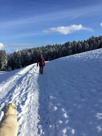 Winter-Wonderland in Alberschwende-Fischbach.Foto: handout/D'Errico