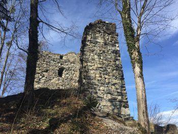 Auf dem Rundweg liegt die Ruine Ramschwag, eine steinzeitliche Brandopferstätte sowie ein Bienenlehrpfad und ein Bienenmuseum. Fotos: handout/The Sunny Side of Kids/D'Errico