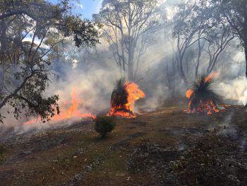 """<p class=""""caption"""">Knappe Sache: Vor wenigen Wochen loderten die berüchtigten australischen Buschbrände sehr nahe am Haus von Mario Hartmann.</p>"""