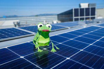 Auf dem Dach des Messeparks befindet sich eine Photovoltaik-Anlage, die sich über 7650 m² erstreckt. Fotos: handout/Messepark