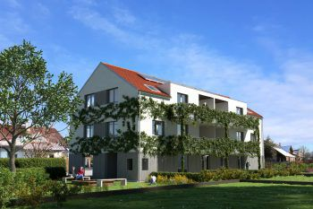 Eine kluge Fassaden-begrünung wirkt sich positiv auf Bauwerk und Klima aus. Foto: handout/Hefel