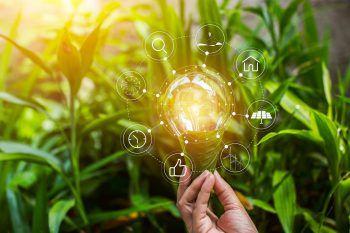 NachhaltigkeitNachhaltigkeit ist ein Handlungsprinzip, nach dem nicht mehr verbraucht werden soll, als wieder nachwachsen oder sich regenerieren kann.
