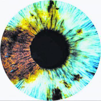 """Von 6. bis 12. Juni geht im Dornbirner Spielboden das """"5th Human Vision film festival"""" über die Bühne. Bild: Spielboden/Human Vision"""