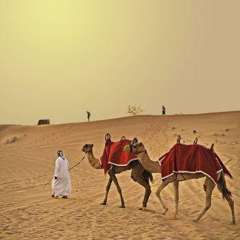 """<p class=""""caption"""">Die Vereinigen Arabischen Emirate bieten wunderbare Wüsten-Erlebnisse.</p>"""