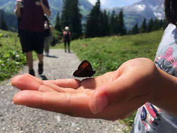 Unterwegs zum Körbersee – eine Wanderung für die ganze Familie. Foto: Sunny Side of Kids