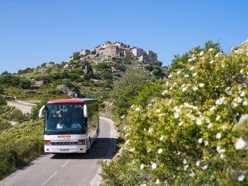 """<p class=""""title"""">               Busexkursionen             </p><p>Ortskundige Feriendorf-Betreuer begleiten die Gäste auf landschaftlich und kulturell interessanten Busexkursionen durch die Region um Calvi.</p>"""
