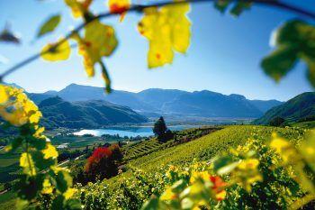 Das herbstliche Südtirol von seiner schönsten Seite erleben.Foto: handout/NKG Reisen