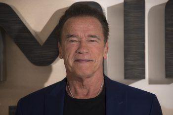 """<p class=""""title"""">               Arnold Schwarzenegger             </p><p>Der ehemalige Mr. Olympia und Ex-Gouverneur Kaliforniens soll gleich mehrere Harleys besitzen. Die Harley Davidson, die er im Film """"Terminator 2"""" gefahren ist, war übrigens eine Fat Boy.</p>"""