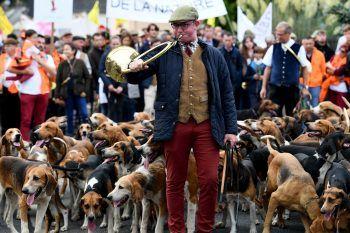 <p>Redon. Auf den Hund gekommen: Ein Jäger demonstriert für den Erhalt der Jagd und des ländlichen Lebens in Westfrankreich.</p>