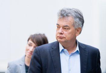 Grünen-Chef Werner Kogler. Foto: APA