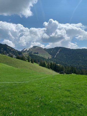 """<p class=""""caption"""">Von Fraxern aus kann man sowohl zur Alpe Maiensäss sowie zur Hohen Kugel wandern..Foto: The Sunny Side of Kids</p>"""